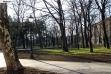 Zemunski park - januar 2018.